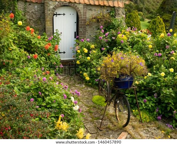 English Cottage Garden White Gate Flowers Stock Photo Edit Now
