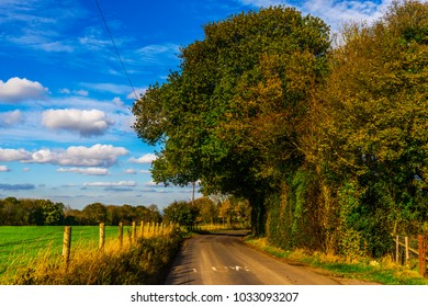 English country road on a sunny day, lush green vegetation, narrow road