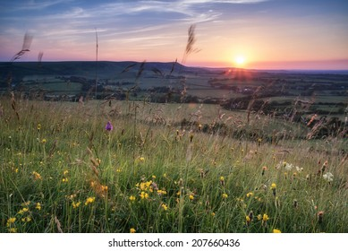 English countryside landscape in Summer sunset light