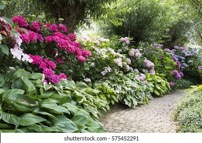 english garden flowers. English Garden Full Of Flowering Plants As Azalea And Rhododendrons Flowers