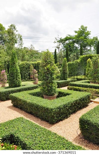 English Garden Style Stock Photo Edit Now 371369011