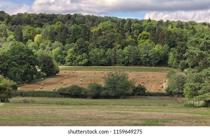 An English Rural Landscape in the Chiltern Hills with Hay Bales and woodland