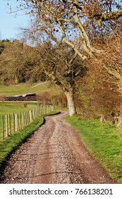 An English Rural Landscape in the Chiltern Hills with a farm track beside a field