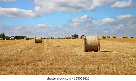 An English Rural Landscape with field of golden wheat stubble and round hay bales