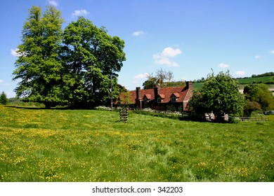 English rural scene - a cottage set in a wildflower meadow
