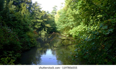 English Woodland River in Early Autumn