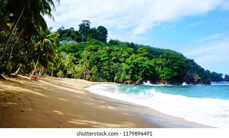 Englishman bay, beautiful sandy beach with blue sea and palm trees near Castara on Tobago island, Trinidad & Tobago, Caribbean sea