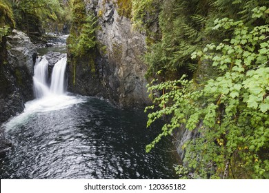 Englishman's Falls on Vancouver Island, British Columbia. Near Parksville.