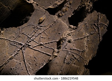 Engravings of Penascosa Archaeological Site of paleolithic rock art open-air paintings in Castelho Melhor village within Côa Valley in northern Portugal in Europe
