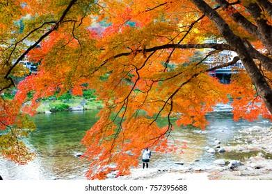 Enjoy beautiful autumn leaves (maple leaves/momiji) at Korankei, Toyota City, Aichi Prefecture, Japan on mid November 2017