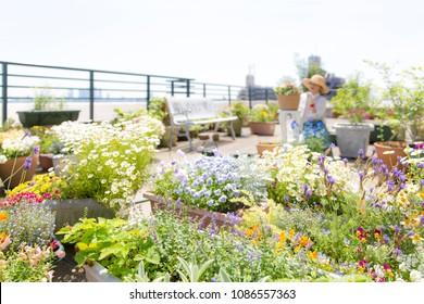 Enjoy gardening at the balcony