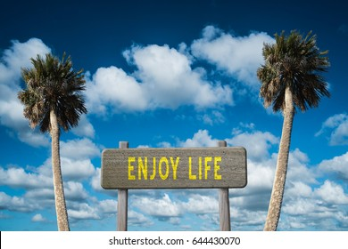 Enjoy Life sign on palm tree and sky background