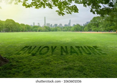 Enjoy Nature Sign on Green Grass in City Park