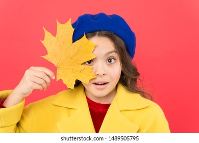 Enjoy season. Hello september. Little girl welcome autumn season. Kid girl cute face hold maple leaf. Child with autumn yellow leaf. Autumn is here. Small girl wear fall outfit on red background.