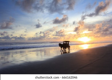 Enjoy the sunset at parangtritis beach while riding carriage (Menikmati sunset di Pantai Parangtritis, Bantul, Yogyakarta sambil naik andong)