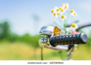 Enjoy a warm sunny spring day with a bike tour through lovely green spring flower covered landscape where everything is full of colorful life and butterfly and bees are around you