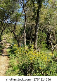 Enjoying the biking and hiking trails of the Texas Hill Country - what you can find and experience even in a big city