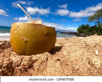 Enjoying a fresh coconut drink with a straw on Oneloa Beach in Maui, Hawaii.