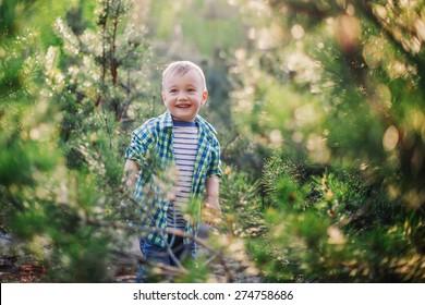 Enjoying sunny day. Cute little boy playing hide and seek in fir forest
