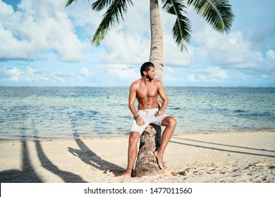 Enjoying suntan and vacation. Portrait of young bearded man leaning on coconut palm tree on the tropical  beach.