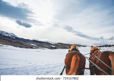 Enjoying a traditional horse carriage sleigh ride on holiday winter scene snow during the winter time with pine tree and mountain background.