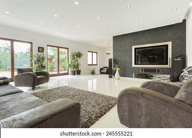 Enormous living room in expensive house, horizontal