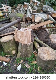 Enough firewood outdoor for this winter