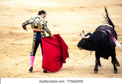 The enraged bull attacks the bullfighter. Spain Monumental Corrida de toros