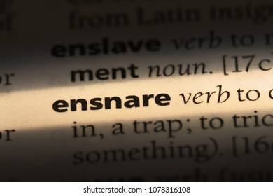 ensnare word in a dictionary. ensnare concept