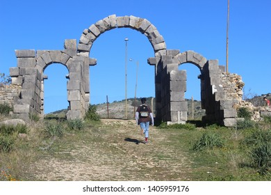 the enter of the old roman city volubilis near to meknes in morocco
