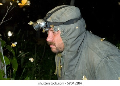 The entomologist observes insects at night.