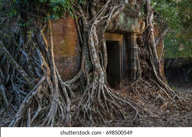 Entrance to ancient Hindu temple covered by tree roots in Koh Ker, former capital of Khmer empire, now a remote archaeological site in jungle outside of Angkor Wat, Siem Reap, Cambodia
