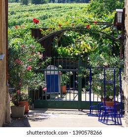 Entrance to a cozy courtyard garden with roses wrapping around the arch and flowers in pots, views of the vineyards in Wachau valley, Austria