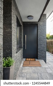 Entrance door into modern house