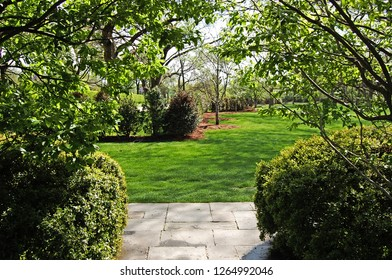 Entrance to Green peaceful garden nature background with bushes and trees and sunlight screensavers