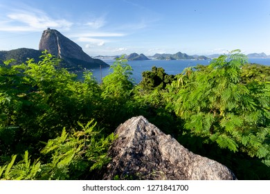 Entrance of the Guanabara bay in Rio de Janeiro with an ocean view of the Sugarloaf mountain from an adjacent mountain top and vegetation with the city of Niteroi in the background