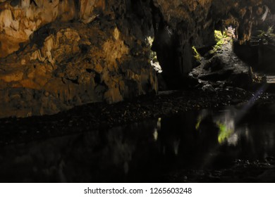 entrance hall, with subterranean river running meekly and reflecting the interior of the. Diabo cave, Eldorado Sao Paulo, Brazil