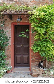 Entrance to the old Italian house and a cat