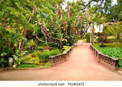 Entrance of Terra Nostra botanical garden with untouched flora at Furnas, Azores, Portugal