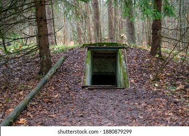 Entrance to underground military bunker in the forest. Former concrete dugout in woodland used during the war