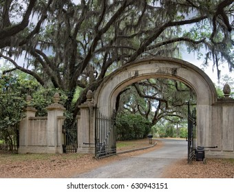 Entrance to Wormsole Plantation with live oaks and Spanish Moss
