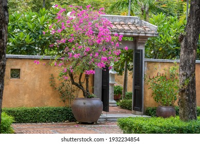 The entrance is in the yellow stone fence and beautiful pink flowers on the street in village near Da Nang town, Vietnam, close up