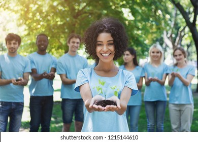 Environment care. Happy african-american volunteer smiling and proposing you young green tree