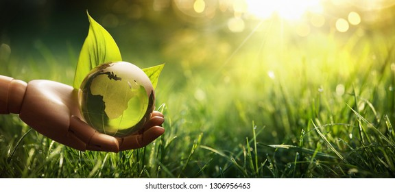 Environment Concept Green Planet in Your Hands. Save Earth