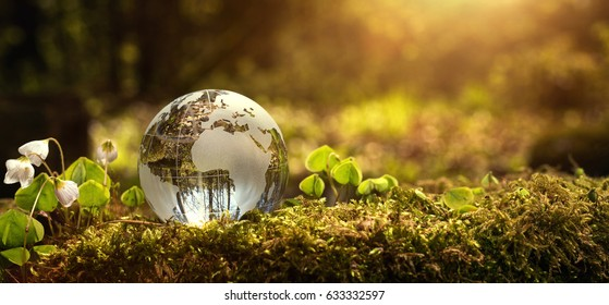Environment conservation concept. Close up of glass globe in the forest with copy space - Shutterstock ID 633332597