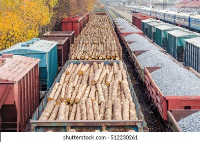 Environment, nature and deforestation forest - felling of trees. The concept of a global problem. Freight train loaded with pine trunks