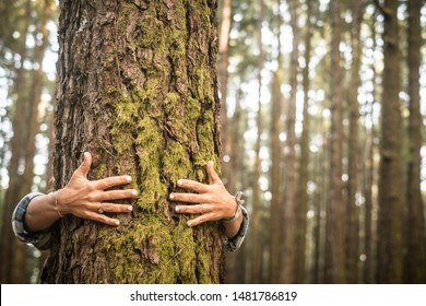Environment and respect for Earth nature concept - adult woman hugging a green tree in the forest - save the planet and climate change - defocused background wih nature