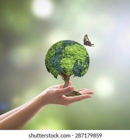Environmental conservation, world wood day and sustainable environment in csr campaign concept