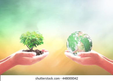 Environmental consultant concept: Two humans hands holding earth globe and heart shape of tree. Elements of this image furnished by NASA