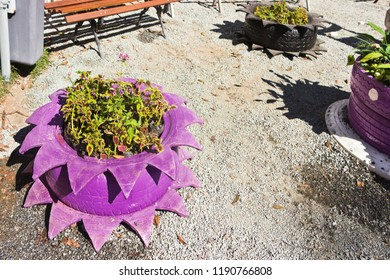 Environmental education with reuse of old colored tires that serve as flower beds